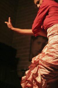 Flamenco Dancer - elegant hands during performance.